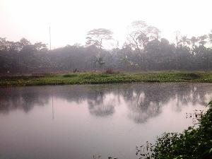 Tiga Situ Hilang di Bekasi